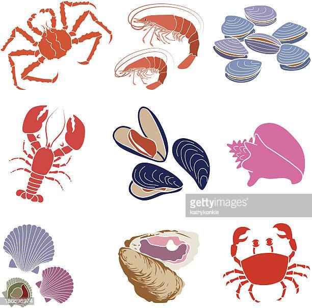 crustaceans, shellfish and mollusks