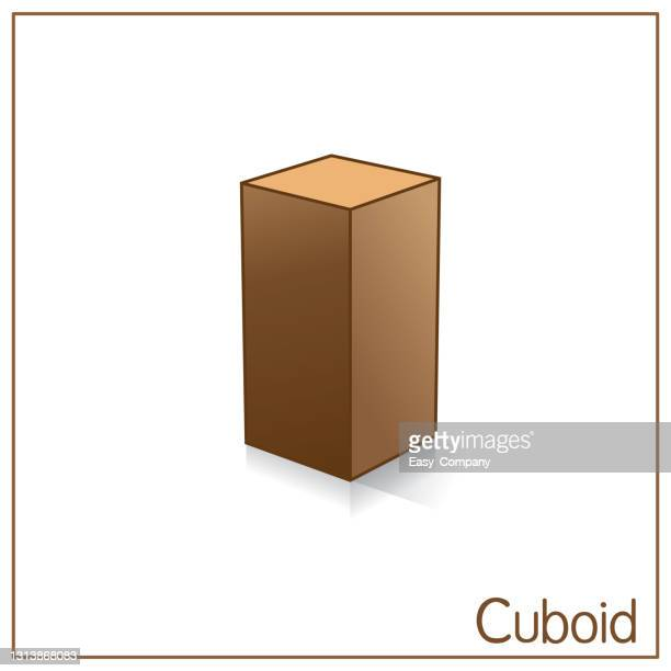 3d cuboid perfect shapes. color image suitable for preschool student coloring, comparison, drawing, doodle, art project, first word book or flash card. - foot bone stock illustrations