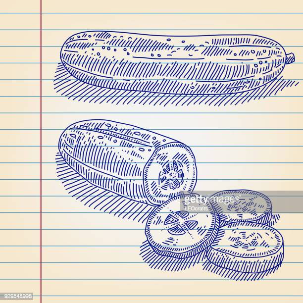 cucumber drawing on lined paper - cucumber stock illustrations, clip art, cartoons, & icons