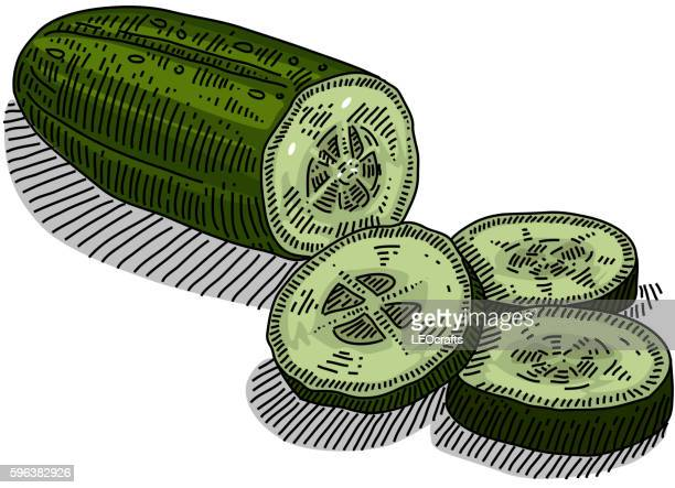 cucumber drawing - cucumber stock illustrations, clip art, cartoons, & icons