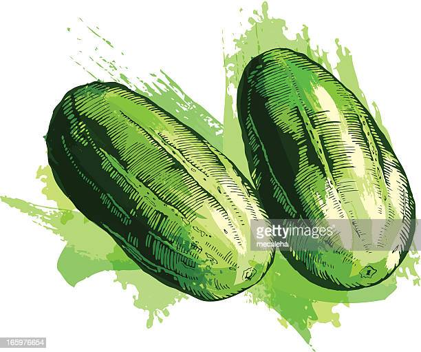 cucumbers - cucumber stock illustrations, clip art, cartoons, & icons