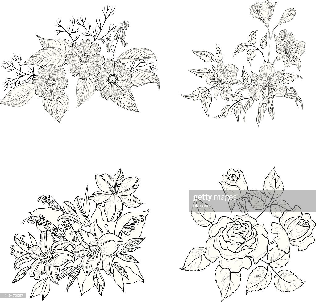 Cultivated flowers, outline, set