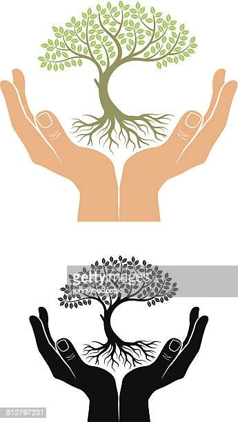 Cupped hands tree
