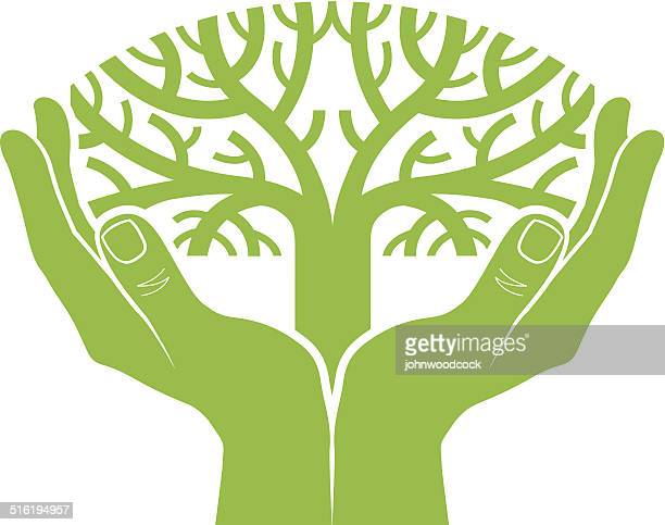 Cupped hands with tree