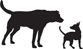 Curious Dogs Silhouette