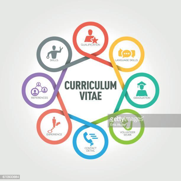 Curriculum Vitae infographic with 8 steps, parts, options