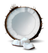 Cut coconut and several pieces of it on a white background.  3D vector. High detailed realistic illustration