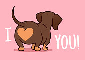 """Cut dachshund puppy dog vector cartoon illustration isolated on pink background. Funny """"I love you"""" heart sausage dog butt design element for Valentine's day, pets, dog lovers theme."""