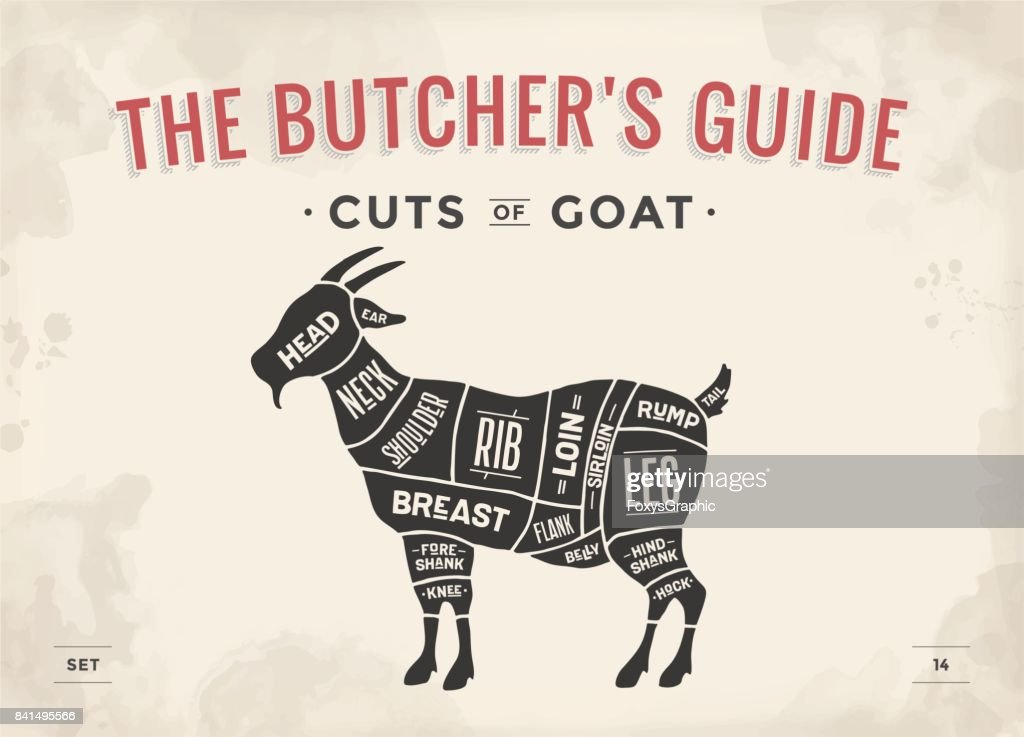 Antelope Butcher Diagram House Wiring Diagram Symbols