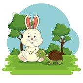 cute adorable bunny turtle animal cartoon