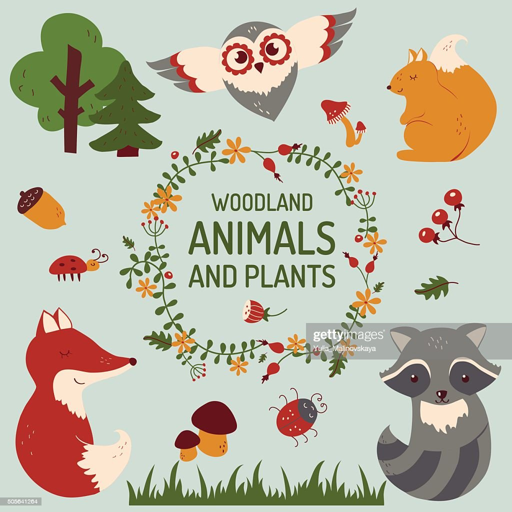 Cute animals set. Vector illustration.