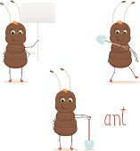 Cute ant