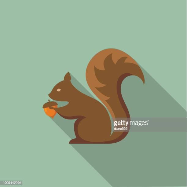 cute autumn icon - squirrel with acorn - squirrel stock illustrations