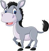 Cute baby donkey posing isolated on white background