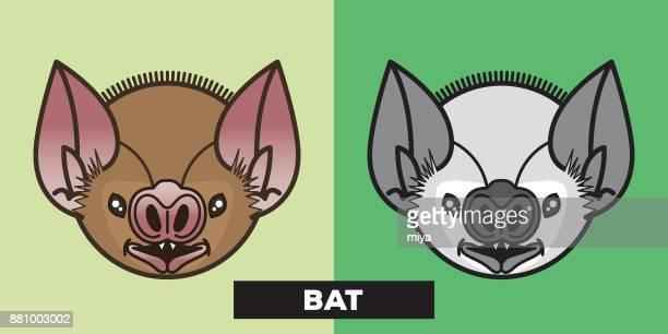 cute bat vector illustration - mammal stock illustrations