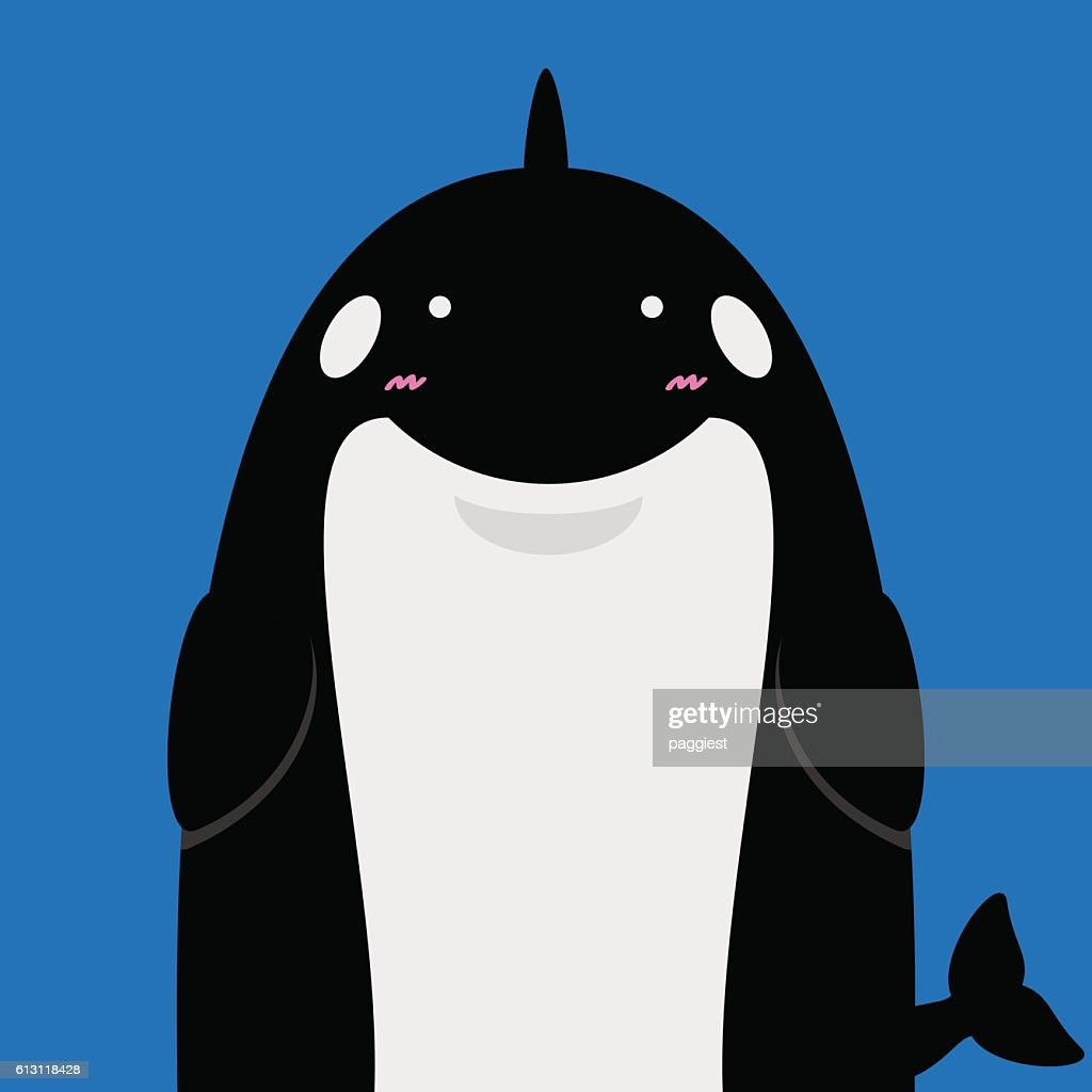 cute big fat killer whale orca