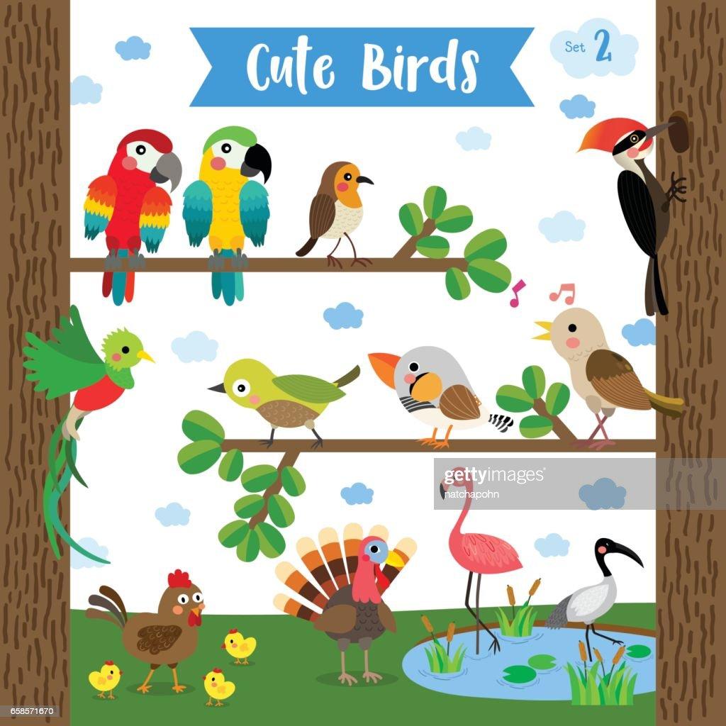 Cute Bird Animal cartoon. Vector illustration. Set 2