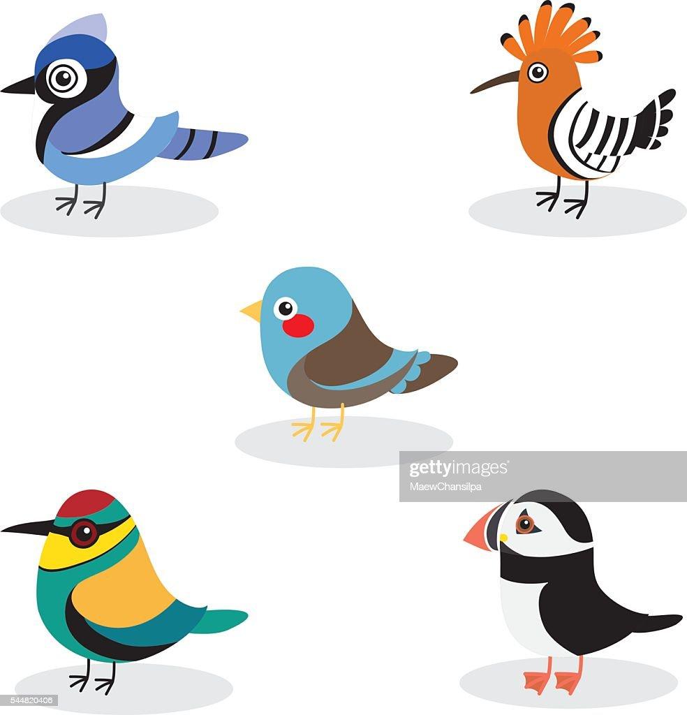 cute birds vector collection