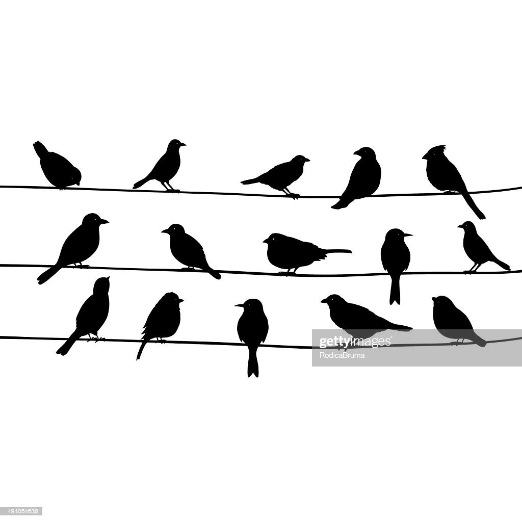 Cute black birds on a wire