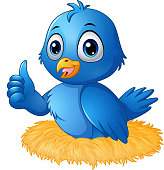 Cute blue bird cartoon giving a thumbs up