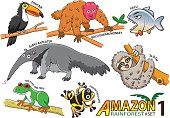 Cute cartoon Animals and birds in the Amazon areas