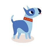Cute cartoon blue bull terrier dog in a red collar isolated on white background. Simple modern flat style vector illustration.