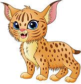 Cute cartoon bobcat