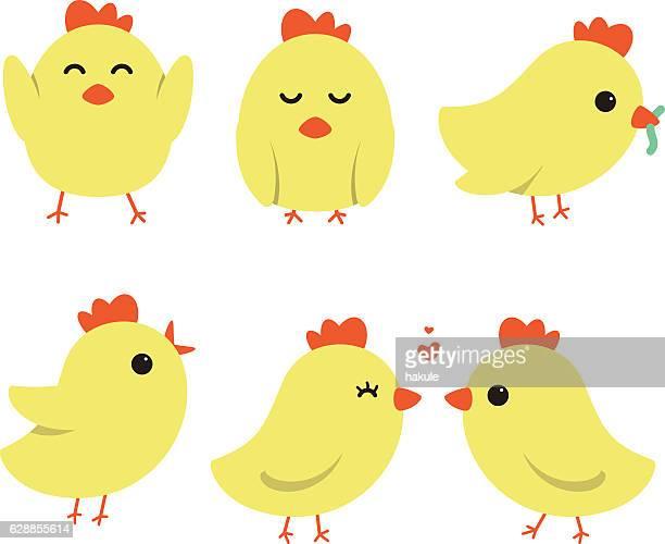Cute cartoon chicken/bird , vector illustration.