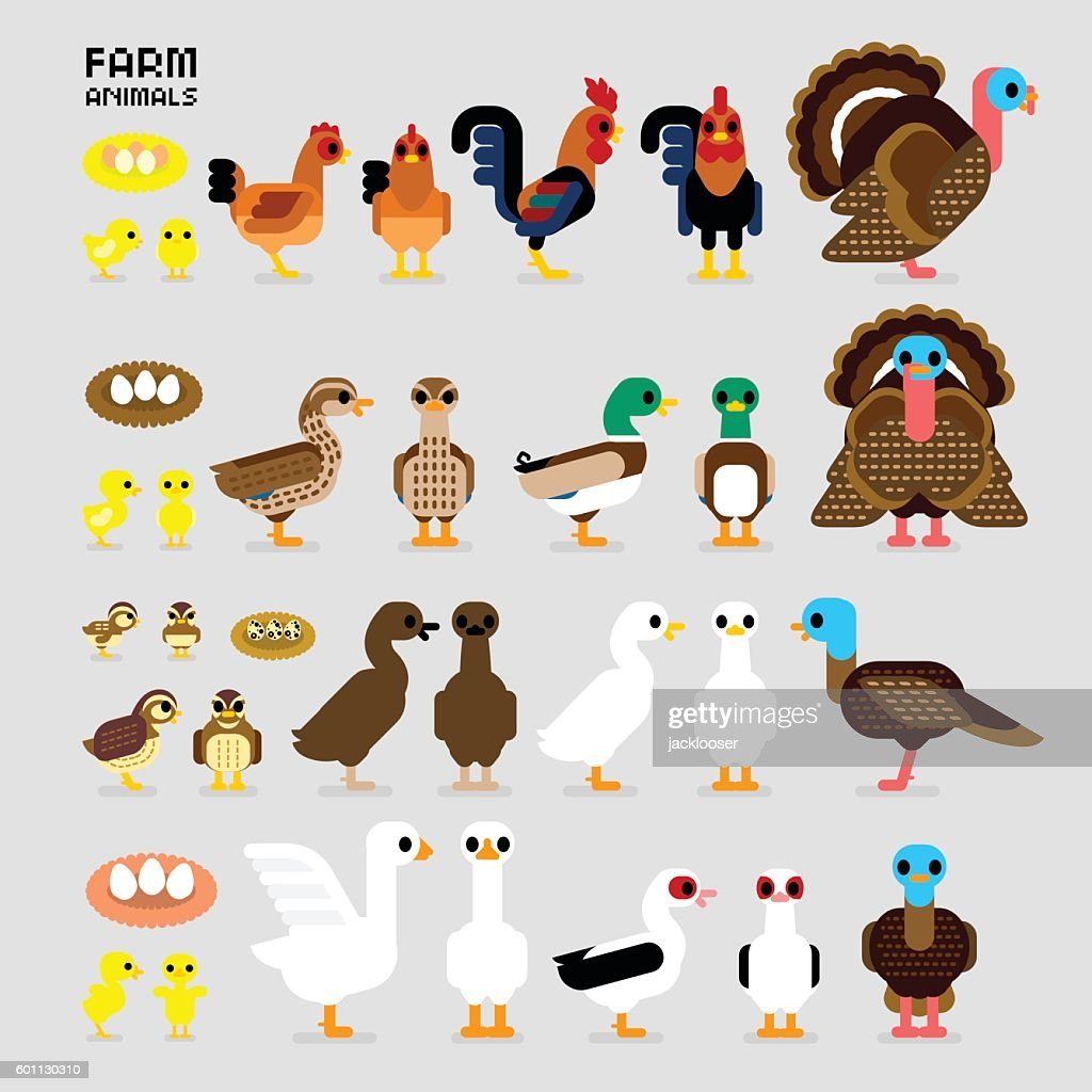 Cute Cartoon Farm Poultry Animals