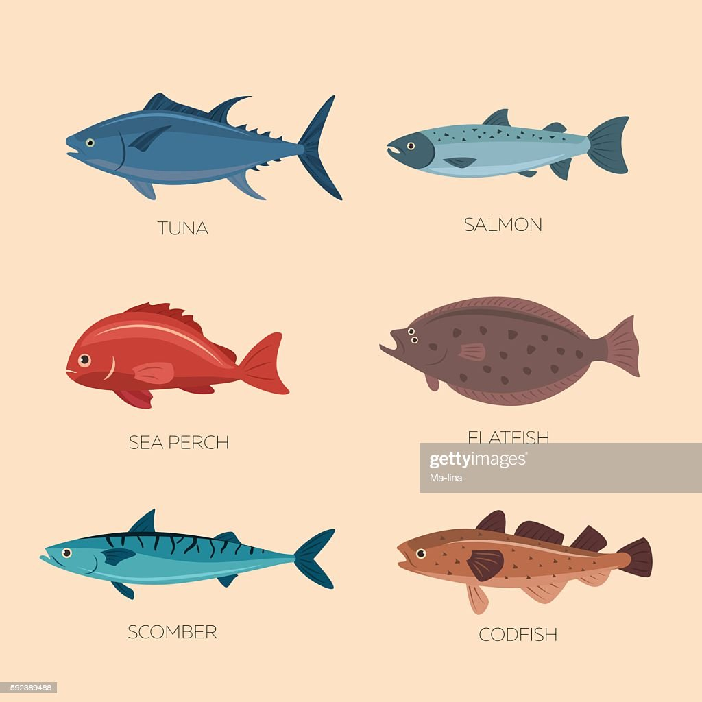 Cute cartoon flat fishes