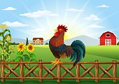 Cute cartoon rooster crowing in the farm fence