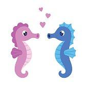 Cute cartoon seahorse couple