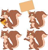 Cute cartoon squirrel collection set