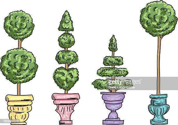 かわいい漫画トピアリーの木の鍋 - トピアリー点のイラスト素材/クリップアート素材/マンガ素材/アイコン素材