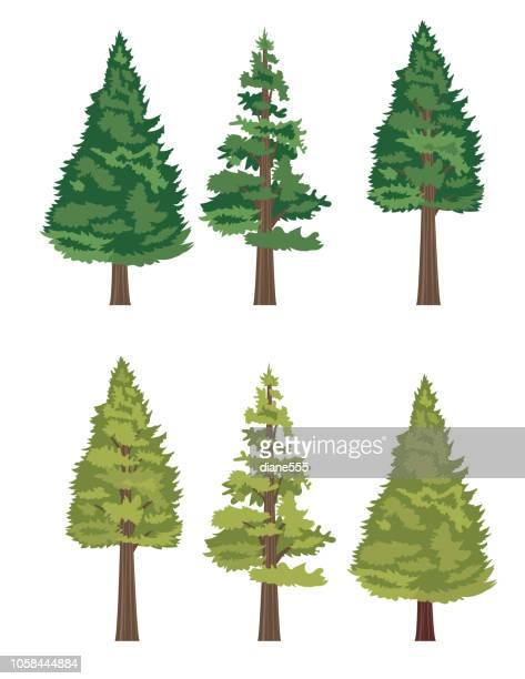 8 623 Pine Tree High Res Illustrations Getty Images Pink and burgundy vector cartoon tree with lovely heart shaped leaves set on a pink gradient free to download for valentine's, kid's clip art, birthday cards and fun nature themed projects. 8 623 pine tree high res illustrations getty images