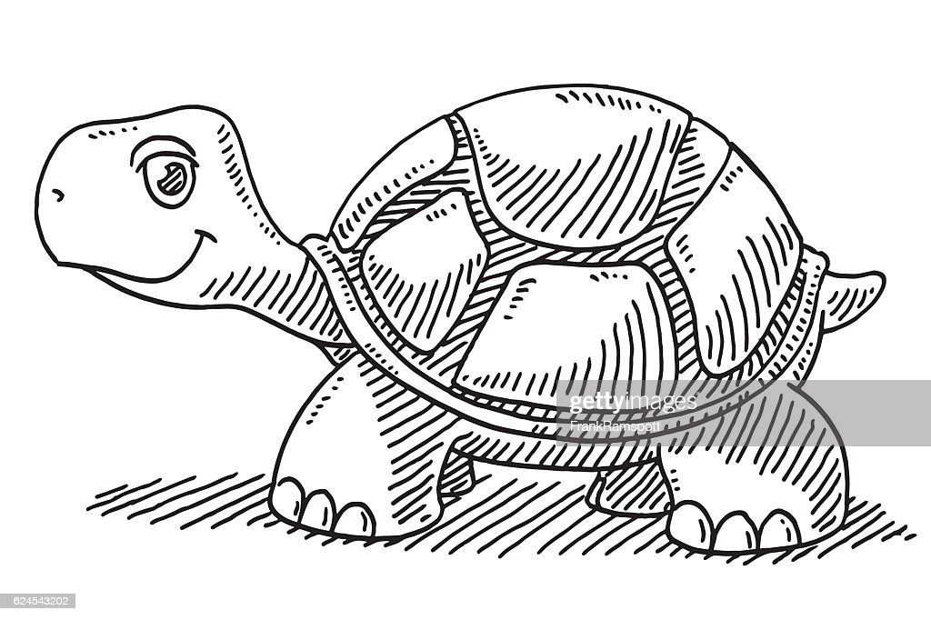 Cute Cartoon Turtle Drawing High Res Vector Graphic Getty Images