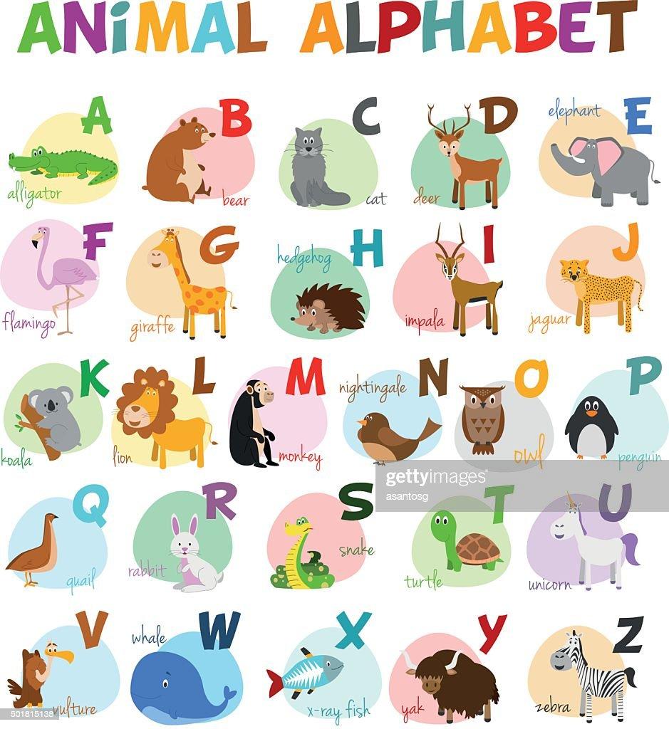 Cute cartoon zoo illustrated alphabet with funny animals english cute cartoon zoo illustrated alphabet with funny animals english alphabet vector art altavistaventures Gallery