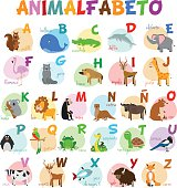 Cute cartoon zoo illustrated alphabet with funny animals. Spanish alphabet.