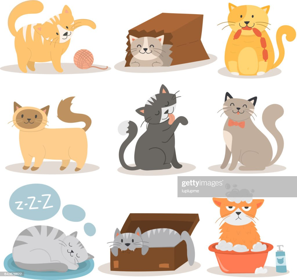Cute cats character different pose vector set