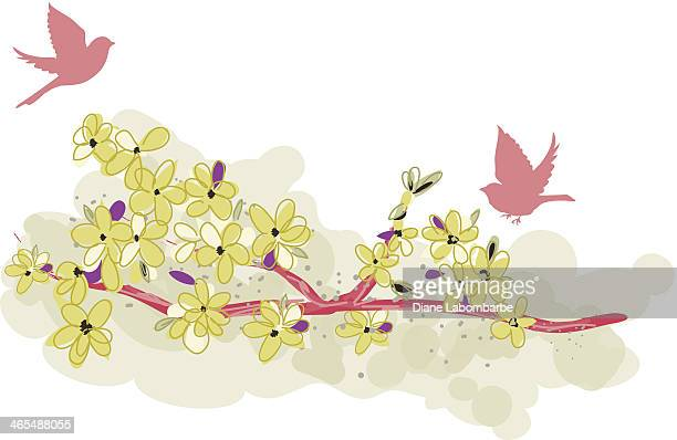 Cute Cherry Blossoms And Birds