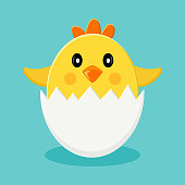 Cute chick in egg shells. Vector illustration