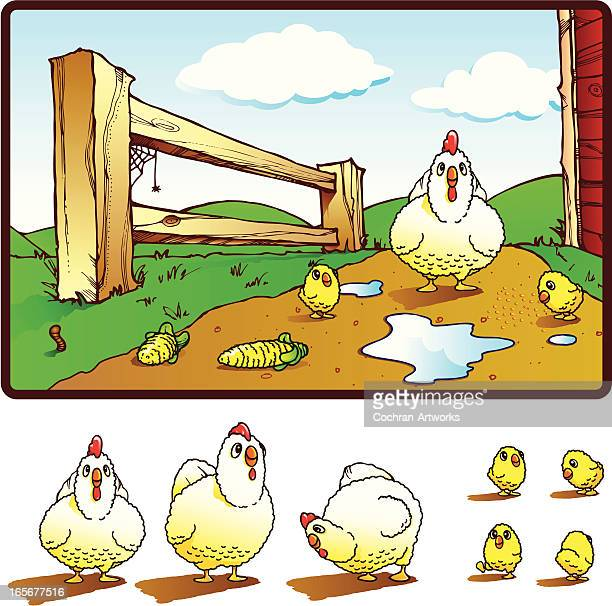 cute chickens and farm - puddle stock illustrations, clip art, cartoons, & icons