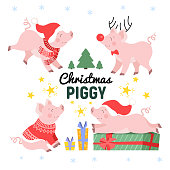 Cute Christmas pig set in different poses cartoon vector illustration. Happy holiday piggy collection isolated on white