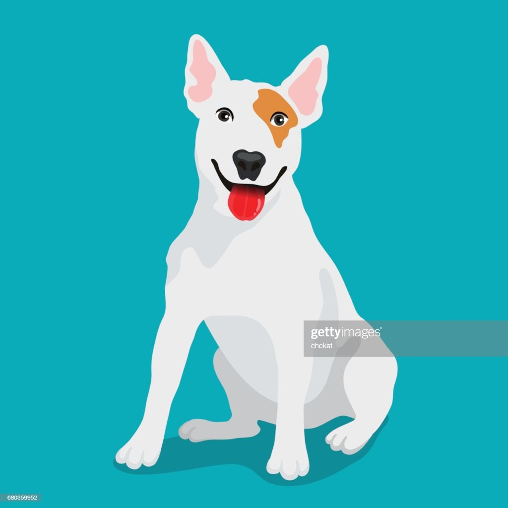 Cute dog Bull-terrier breed