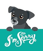 Cute Dog Holding A Board With The Text  I'm Sorry.