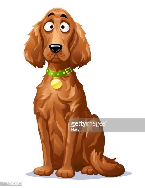 cute dog- irish setter - canine stock illustrations