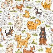 Cute dogs pattern. Seamless vector illustration  bulldog, bobtail, dachshund, bullterrier