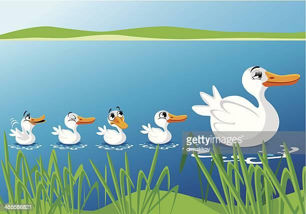 bildbanksillustrationer, clip art samt tecknat material och ikoner med cute ducks - duck