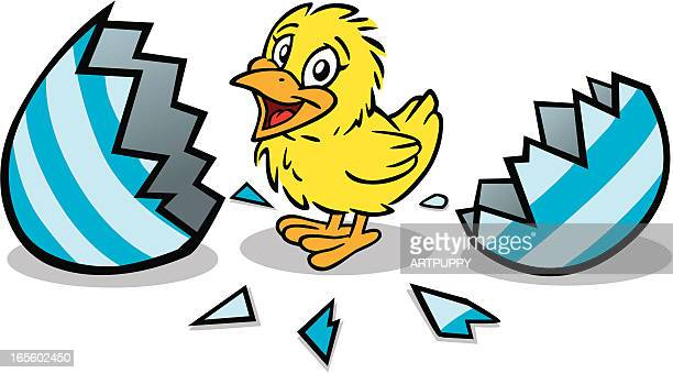 cute easter chick - hatching stock illustrations