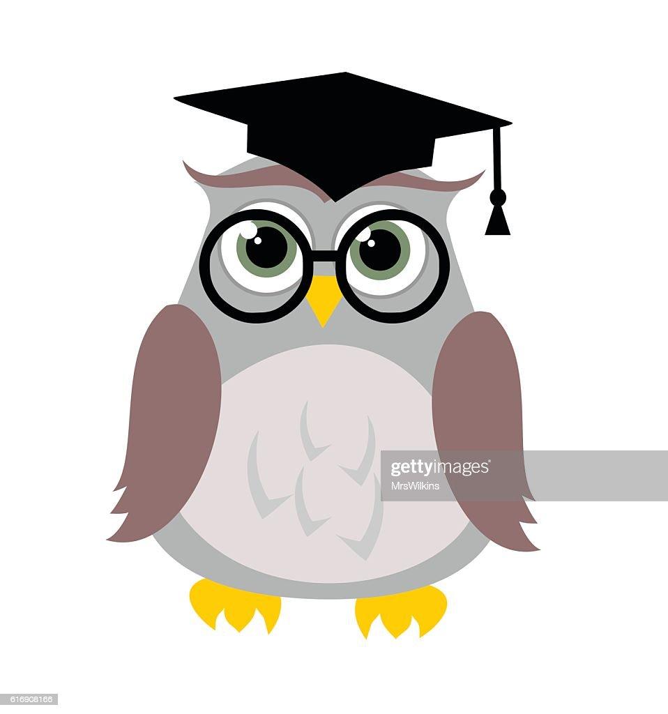 Cute education owl vector illustration : Vector Art
